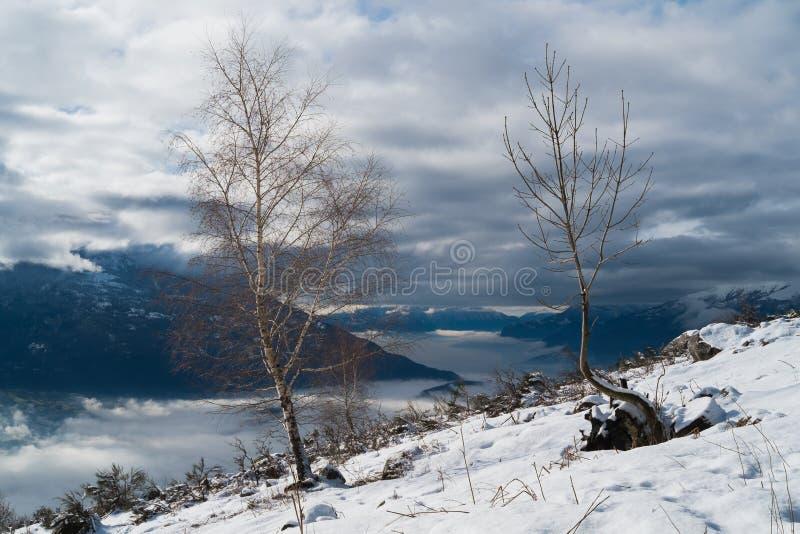 Comomeer in de winter stock foto's