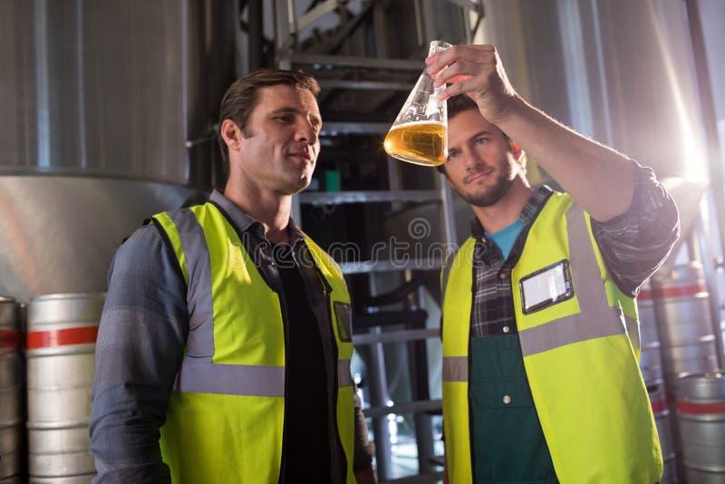Compañeros de trabajo que examinan la cerveza en cubilete fotografía de archivo