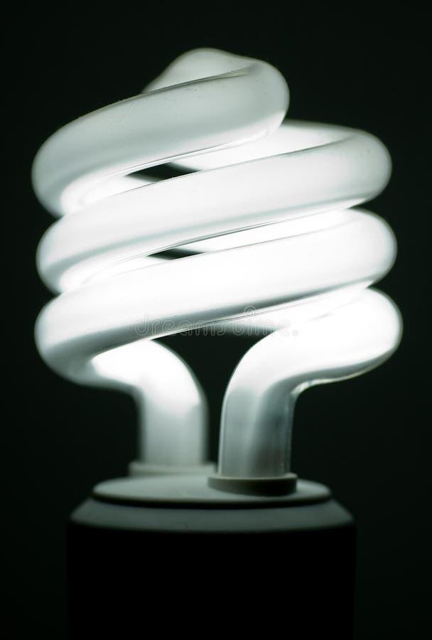 compact den fluorescerande lightbulben royaltyfria bilder