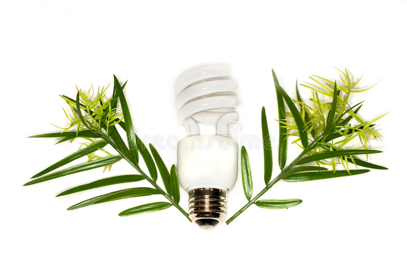 Compact fluorescent bulb royalty free stock photo