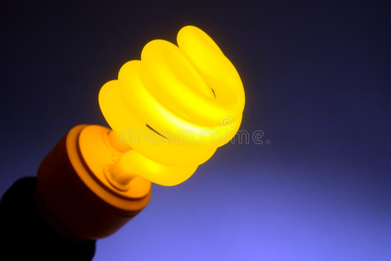 Compact Fluorescent Energy Efficient Light Bulb royalty free stock photos