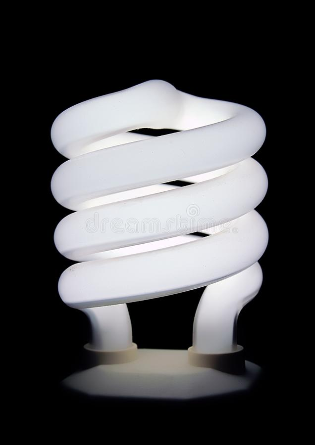 Compact Fluorescent Light Bulb Stock Images