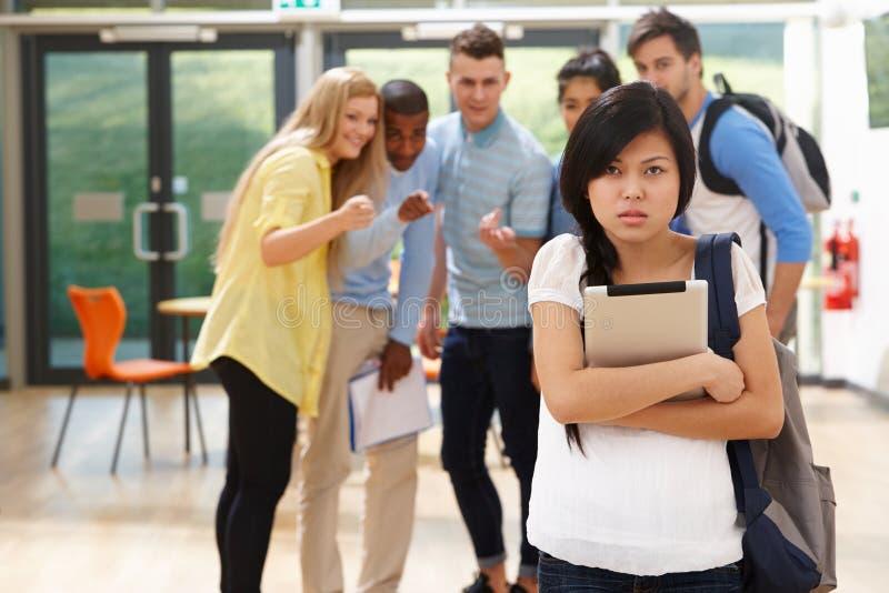 Compagni di classe di Being Bullied By della studentessa fotografia stock libera da diritti