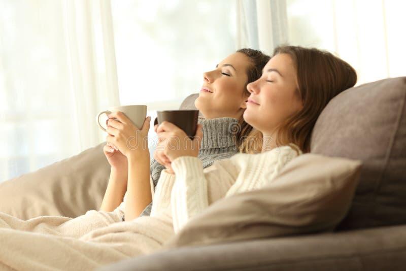 Compagnons de chambre décontractés en hiver à la maison photos libres de droits