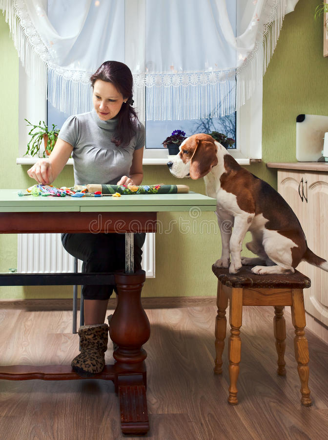 Companion. The dog looks as the mistress embroiders stock images