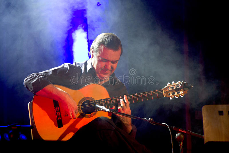 Company flamenco Nino de Pura