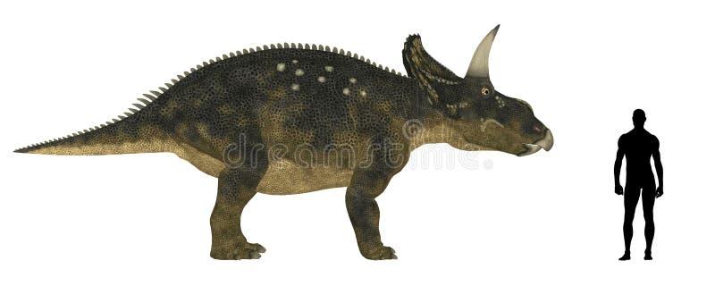 Comparação do tamanho de Nedoceratops ilustração do vetor