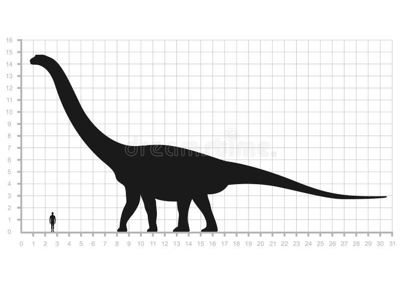 Comparación de la escala de medición de los tamaños del ser humano y del dinosaurio aislada en el fondo blanco Argentinosaurus o  stock de ilustración
