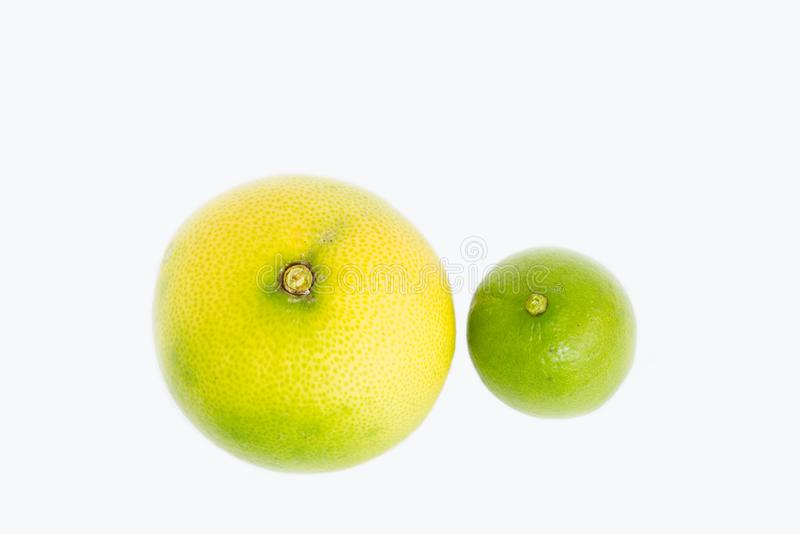 Compare different variety and size of the lemon, lime, local citrus plant fruit white the white background stock photography