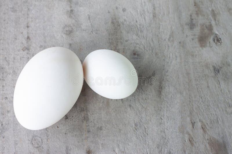 Compare o ovo de ganso do tamanho e o ovo do pato na tabela de madeira velha foto de stock royalty free