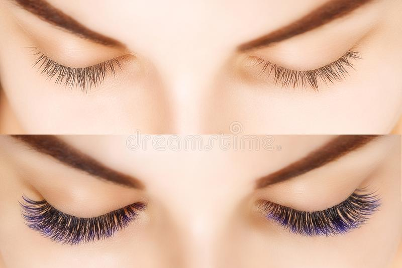 Eyelash Extension. Comparison of female eyes before and after. Blue ombre lashes. Comparison of female eyes before and after eyelash extension. Blue ombre stock images