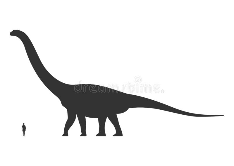 Comparison of human and dinosaur sizes isolated on white background. Argentinosaurus or Brachiosaurus silhouette black vector illustration