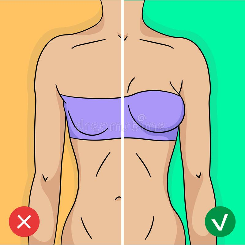 Comparison of woman breast before and after training or surgery. In simple modern flat style stock illustration