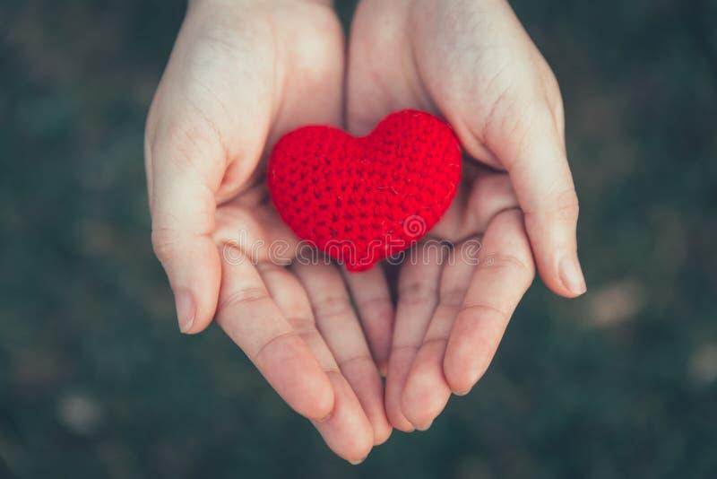 Compartilhando da cor vermelha do amor e do coração na mão das mulheres imagem de stock