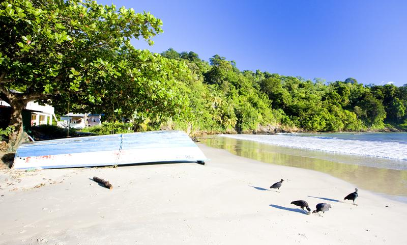 Compartiment de Maracas, Trinidad photo stock