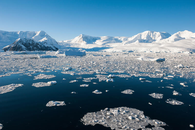 Compartiment de paradis en Antarctique photos libres de droits