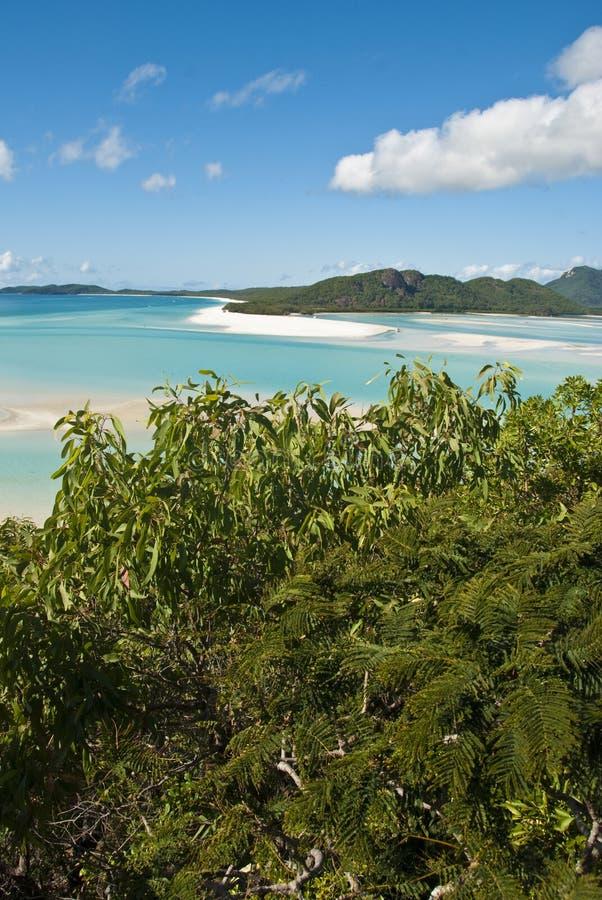 Compartiment de plage de Whitehaven, Queensland photographie stock