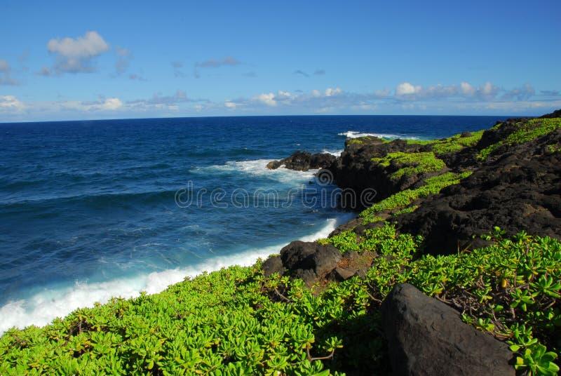 Compartiment Maui Hawaï de Kukui images stock
