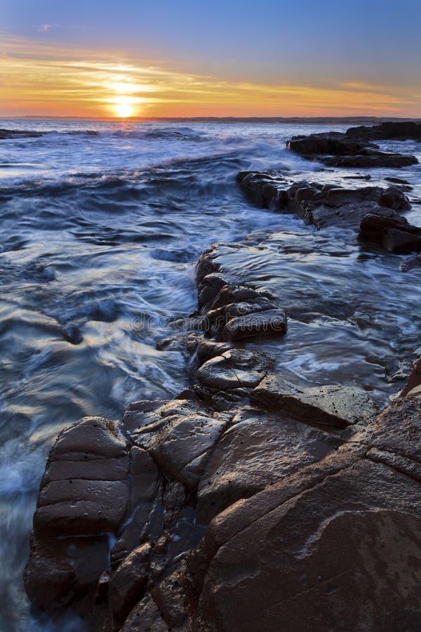 Compartiment Vert réglé d'Anna d'océan photographie stock