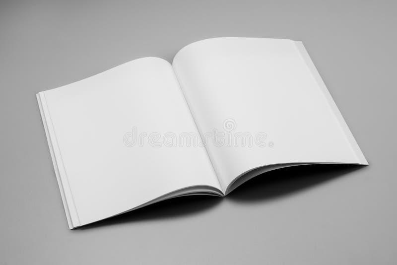 Compartimentos, livro ou catálogo do modelo no fundo cinzento da tabela imagens de stock