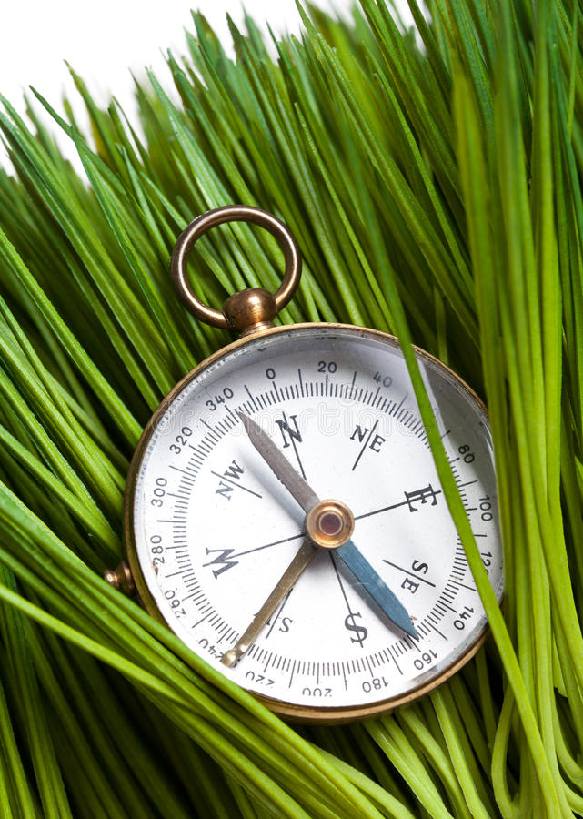 Download Compass and Green Grass stock image. Image of field, discovery - 24096307