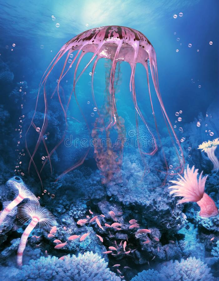 Ocean Compass Jellyfish royalty free stock image