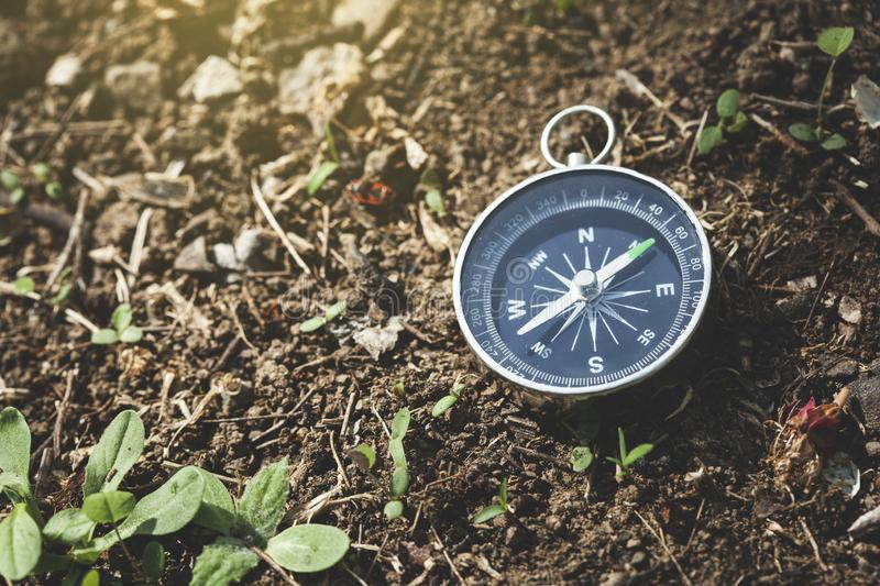 Compass on the soil. With plant background royalty free stock photo