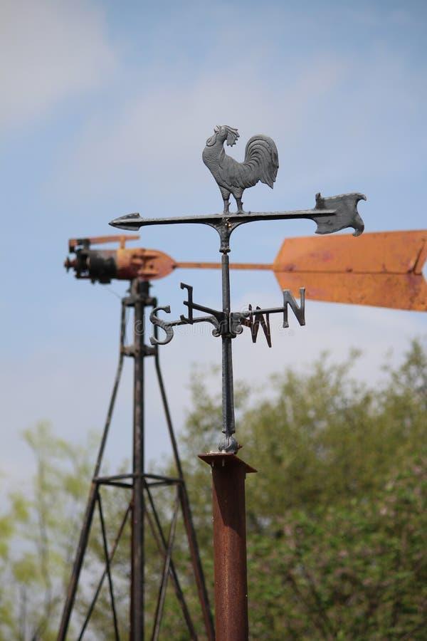 Compasso do vento do galo foto de stock royalty free