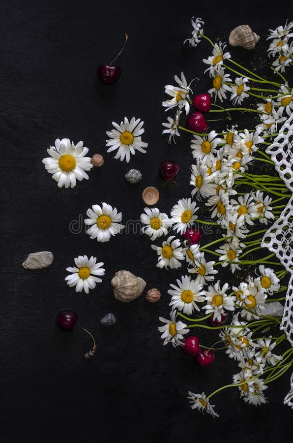 Compensato nero con le ciliege rosse, ciottoli, coperture, piccoli dadi, margherite bianche sul confine openwork bianco fotografia stock libera da diritti