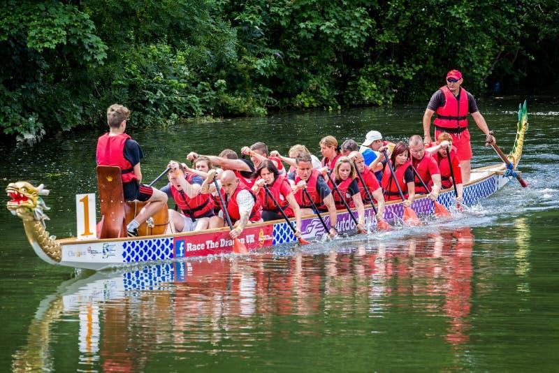 Competência de barco do dragão no rio Avon em Chippenham, Wiltshire, Reino Unido foto de stock