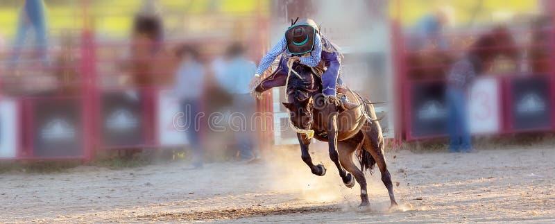 Competencia Bucking del rodeo del montar a caballo foto de archivo libre de regalías
