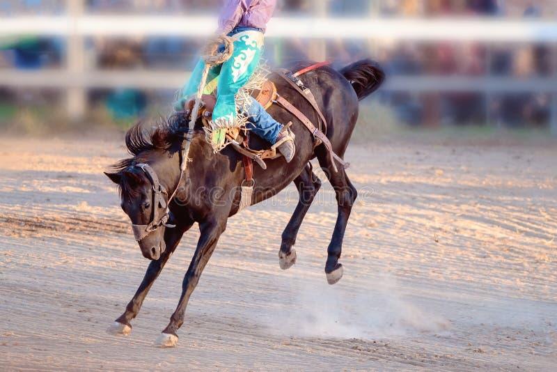 Competencia Bucking del rodeo del montar a caballo imágenes de archivo libres de regalías