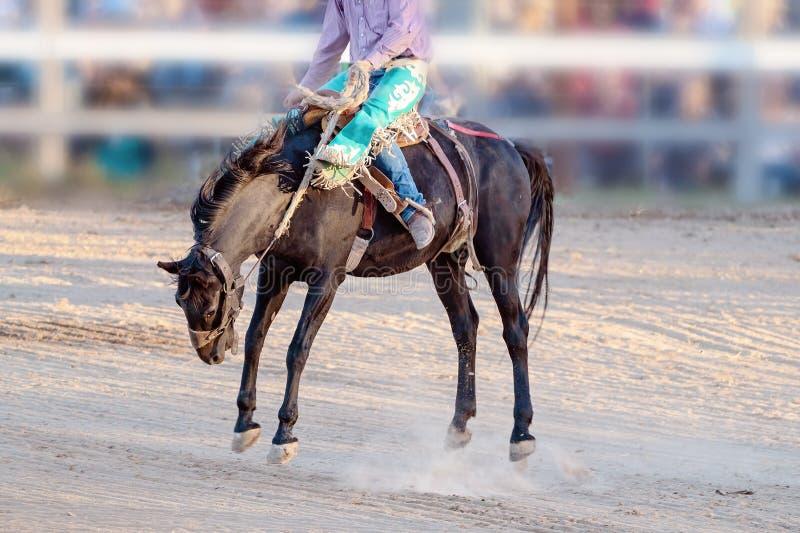 Competencia Bucking del rodeo del montar a caballo foto de archivo