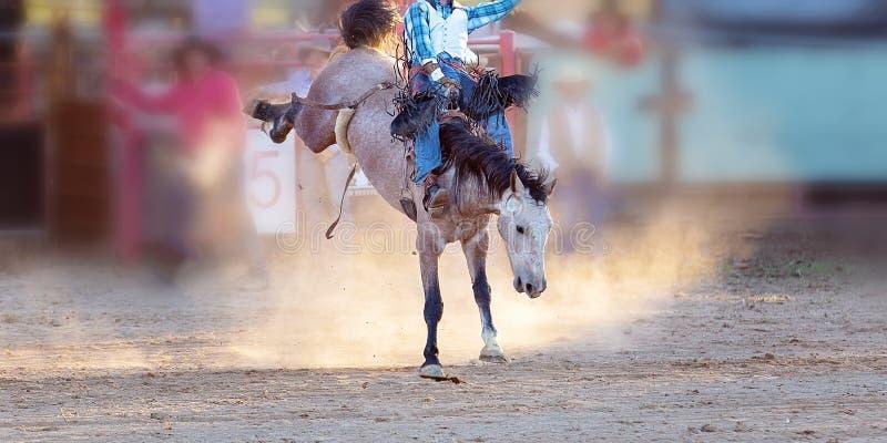 Competencia Bucking del rodeo del montar a caballo fotos de archivo libres de regalías