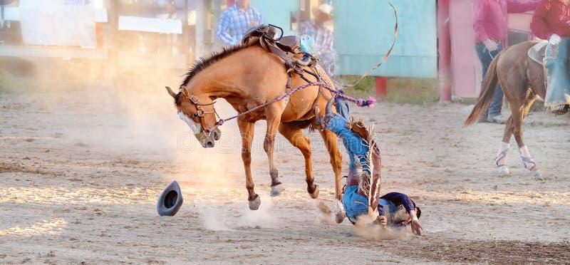 Competencia Bucking del rodeo del montar a caballo imagen de archivo libre de regalías