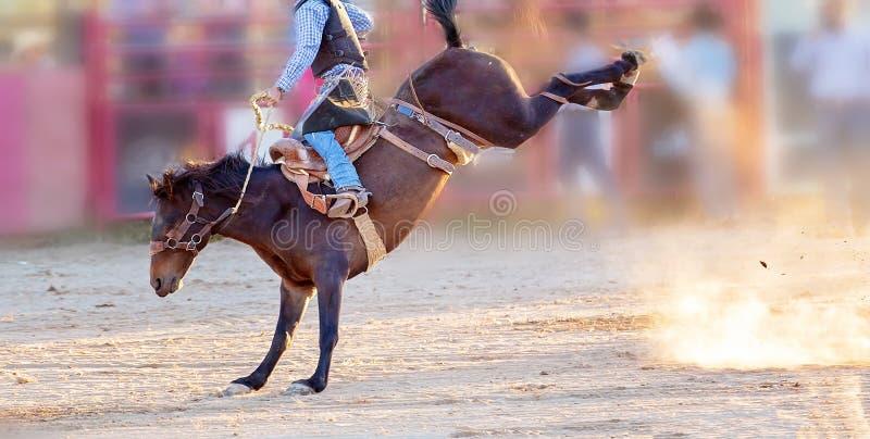 Competencia Bucking del rodeo del montar a caballo fotografía de archivo libre de regalías