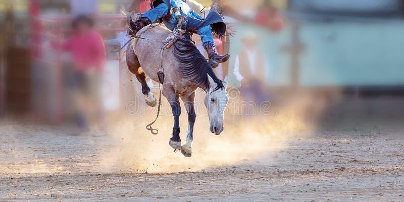 Competencia Bucking del rodeo del montar a caballo imagenes de archivo