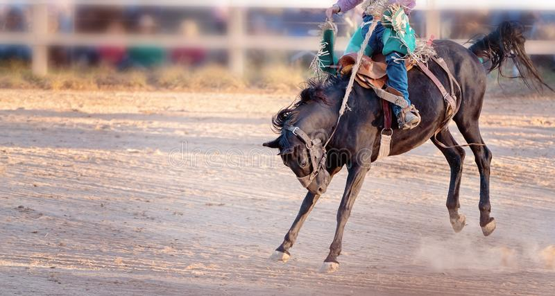 Competencia Bucking del rodeo del montar a caballo fotos de archivo
