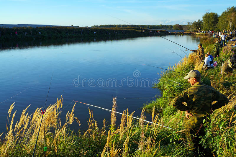 Competencias de deportes en la pesca en la cogida de una carpa y de un esturión, pescadores en el lago fotos de archivo libres de regalías