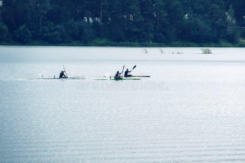 competencias en el rowing en el agua abierta foto de archivo libre de regalías