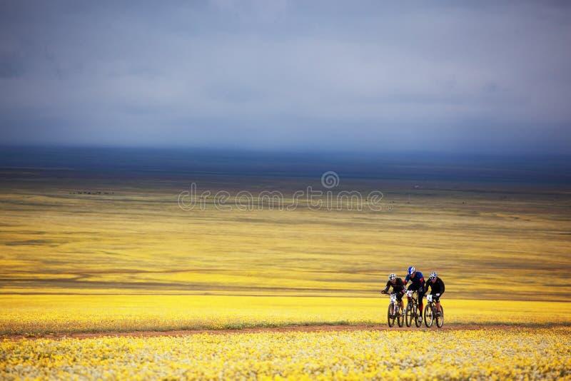 Competição da bicicleta de montanha da aventura da mola foto de stock