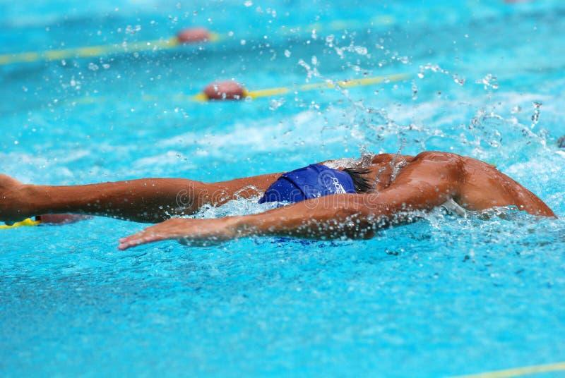 Competição da natação fotos de stock