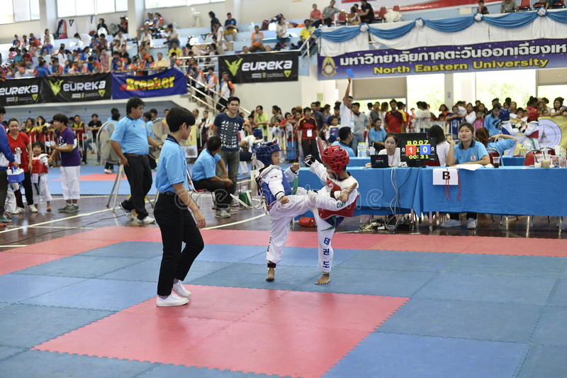 Competição de Junior Taekwondo imagem de stock royalty free