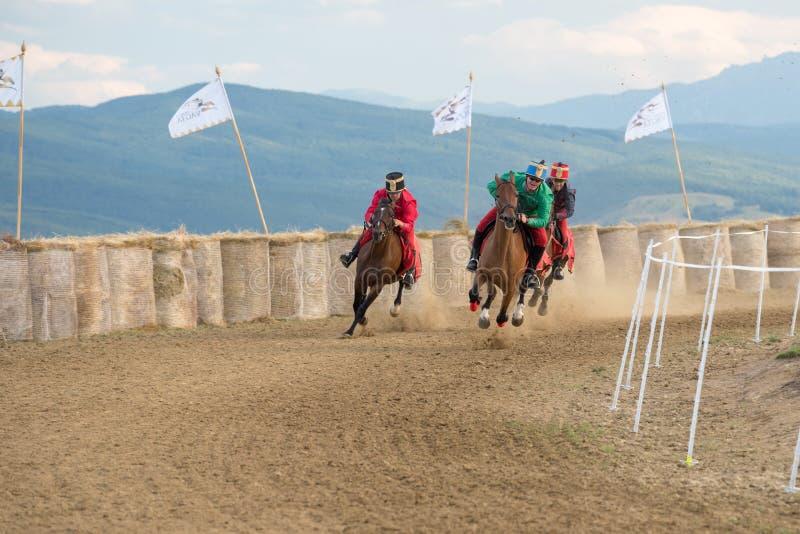 Competição do cavalo, durante uma mostra do cavalo com cavaleiros novos fotos de stock royalty free