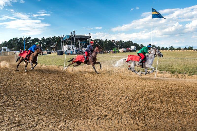 Competição do cavalo, durante uma mostra do cavalo com cavaleiros novos fotografia de stock royalty free