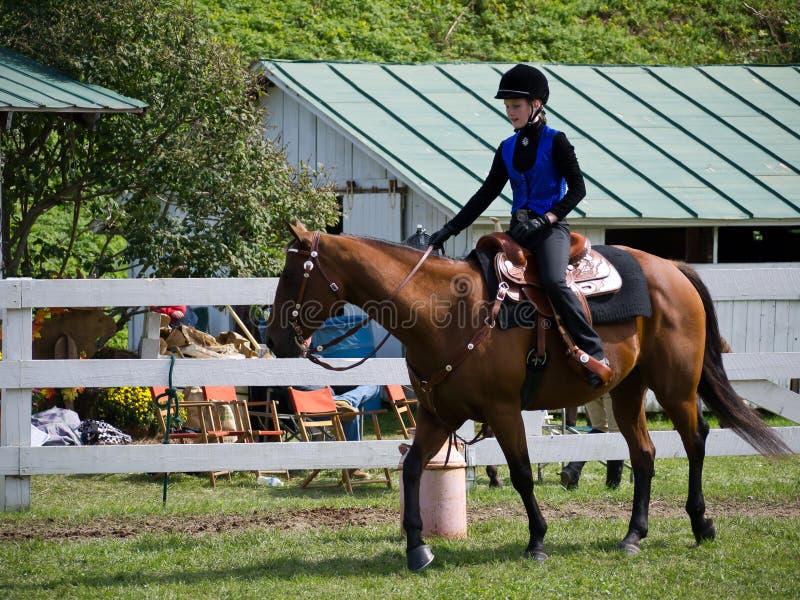 Competição do cavalo na feira de mundo de Tunbridge imagens de stock royalty free