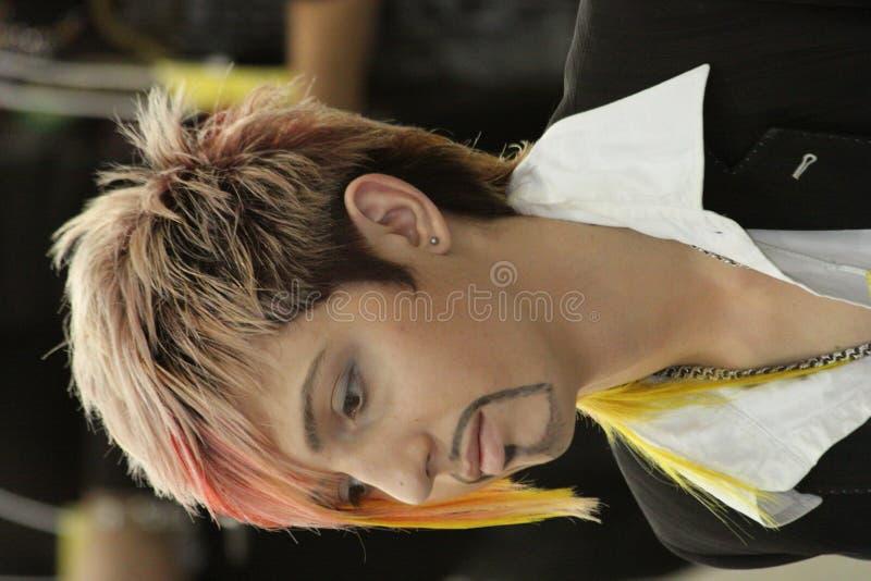 Competição do Hairdressing imagens de stock royalty free