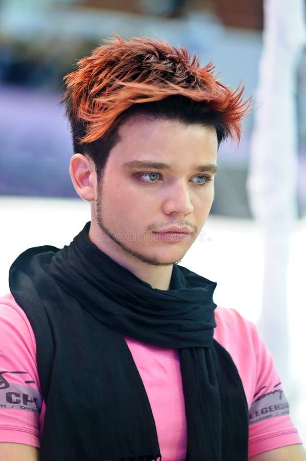 Competição do Hairdressing imagem de stock royalty free