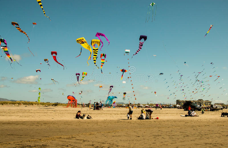 Competição do voo do papagaio na praia imagens de stock royalty free