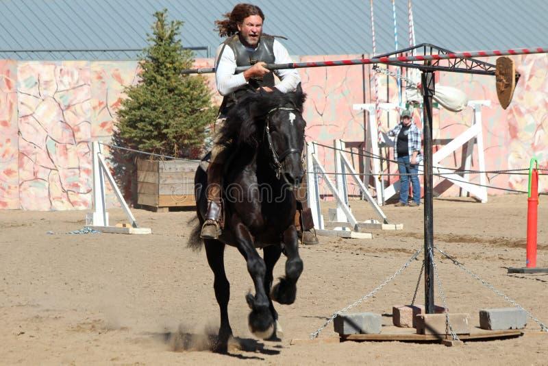 Competição Jousting internacional fotografia de stock royalty free